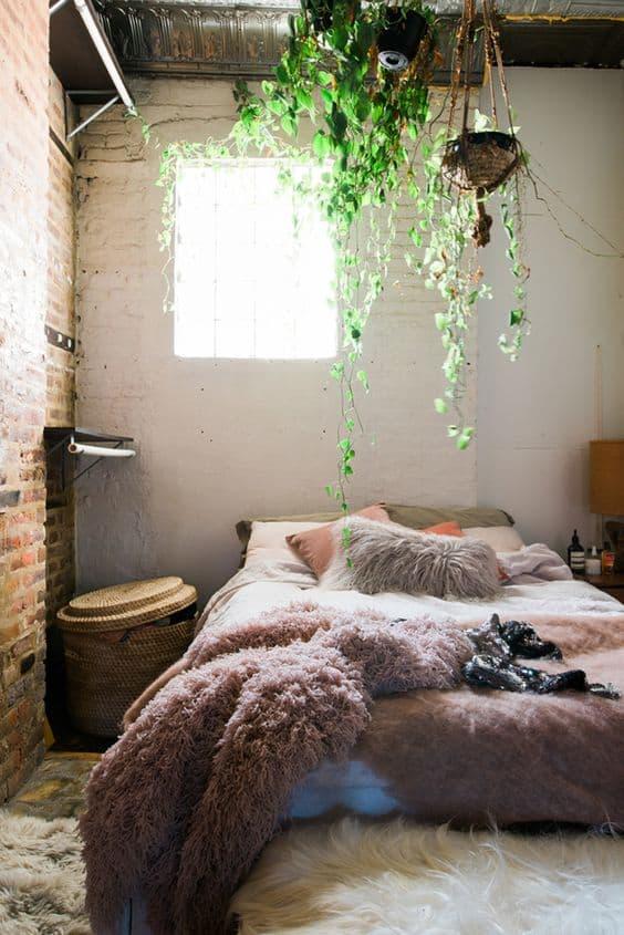 Bedroom Hanging Plants