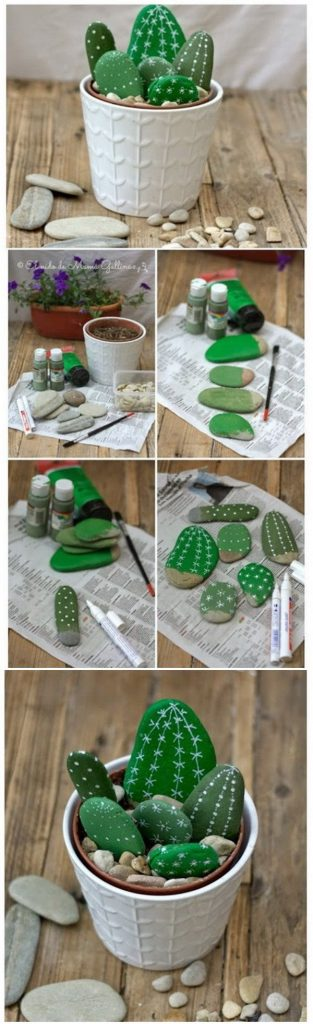 Painted cactus rocks for adults