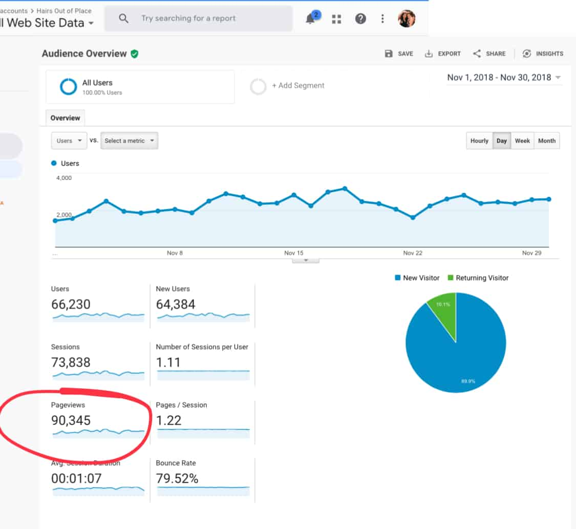 Blog Income Report From Earning 177 Mo To 5200 Mo In One Year Hairs Out Of Place