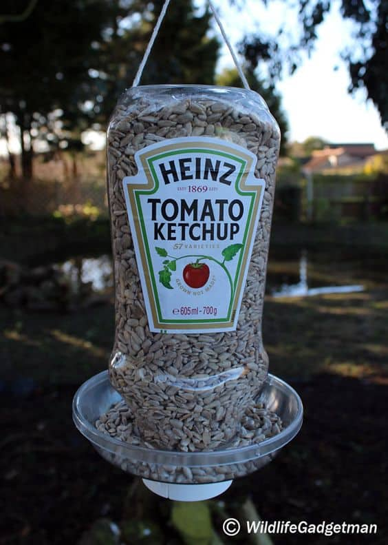 ketchup bottle bird feeder