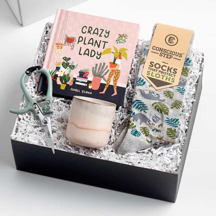 paquete de cuidado regalo para amiga loca dama de la planta