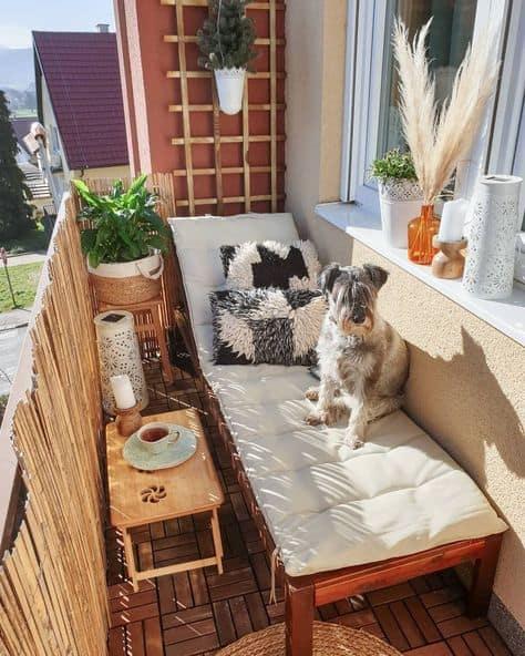 decor ideas for cute balcony dog cushion